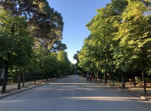 The path in Retiro Park