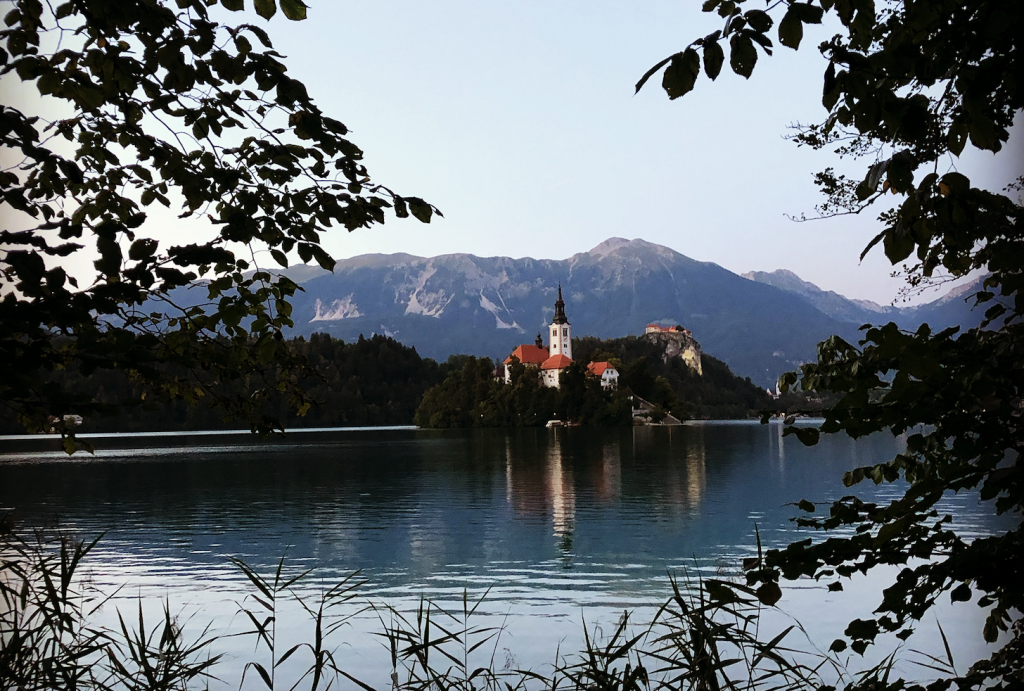 View of Lake Bled Island from the bank of the lake