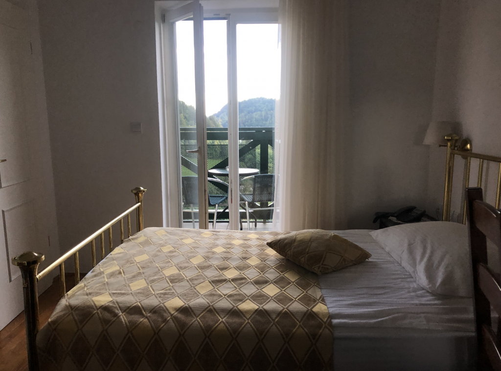 Interior of a single room at Hotel Triglav with a balcony with a Lake view